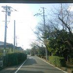さが桜マラソン コースを写真で紹介します 3
