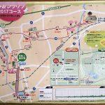 さが桜マラソン 全国4位の人気の大会 ランナー目線でご紹介します