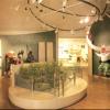 佐賀市 富士町 市川天衝舞浮立(佐賀県重要無形民俗文化財)を知っていますか?